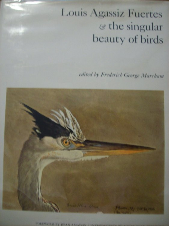 Louis Agassiz Fuertes the Singular Beauty of Birds