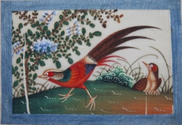 Album of a Dozen Chinese Watercolors of Colorful Birds on Pith Paper 19th Century